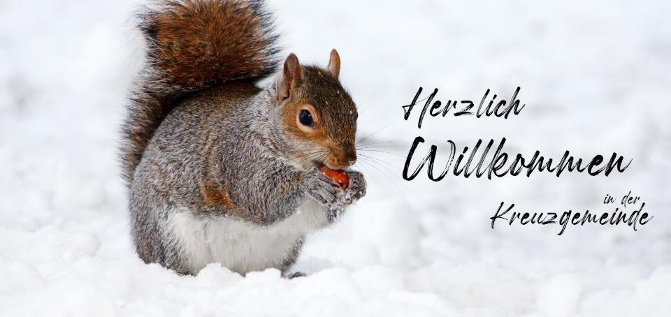 Winter_Hallo.jpg